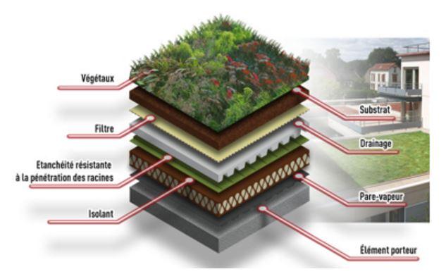 v g talisation build green. Black Bedroom Furniture Sets. Home Design Ideas
