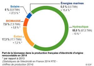 Part biomasse dans la production de electricite en france 2014