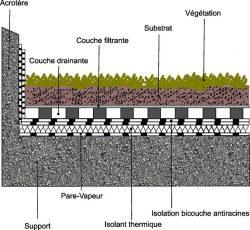 Schema d'une toiture extensive