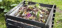compost a partir des déchets ménagers