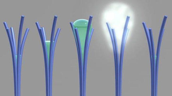 Une-nouveau matériau cree accidentellement permet de capturer eau de air