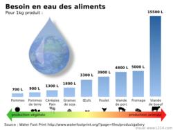 besoin en eau des aliments pour 1kg de produit