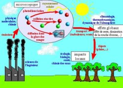 impact de la pollution atmospherique dans la nature