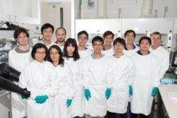 Dr Anita Ho-Baillie (première rangée, en bas à gauche) et son équipe de recherche de perovskite de 12 personnes au Centre australien du photovoltaïque avancé de l'UNSW.