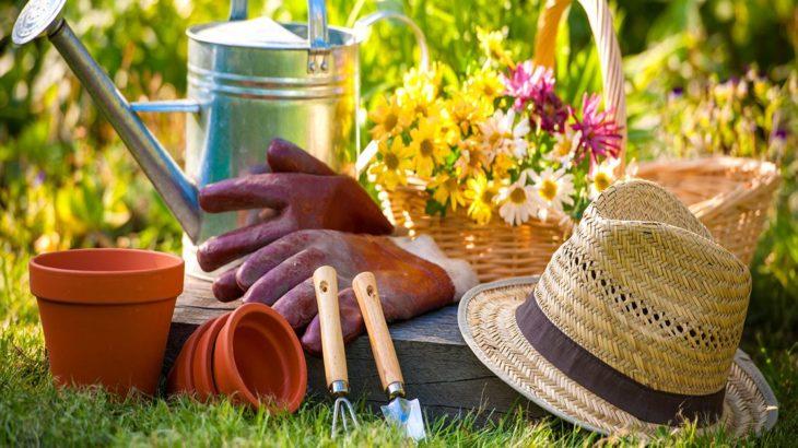 Conso collaborative et si vous pretiez votre jardin