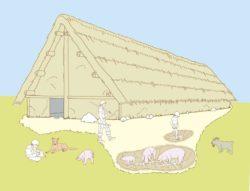 Restitution d'une maison néolithique. Mathilde Dupré, Inrap