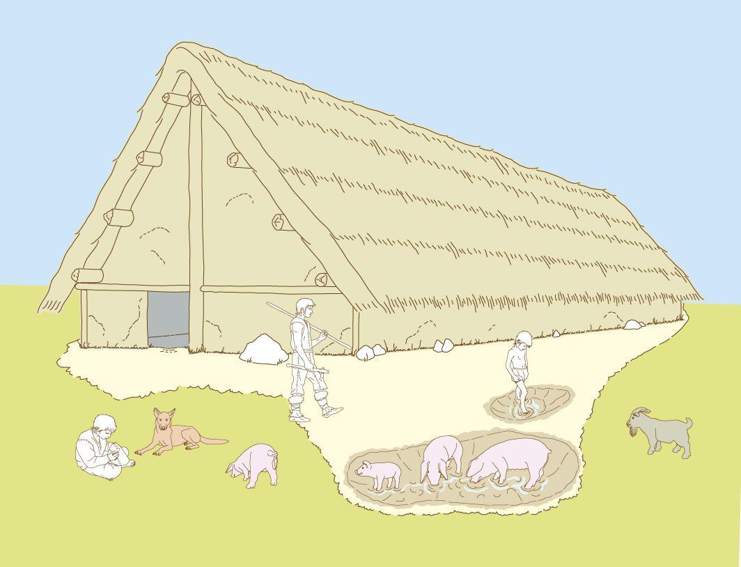 La maison en construction son histoire au travers des Materiaux de construction d une maison