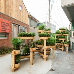 Autre forme du jardin modulaire - growmore par Husum-Lindholm - Seoul, Coree du Sud