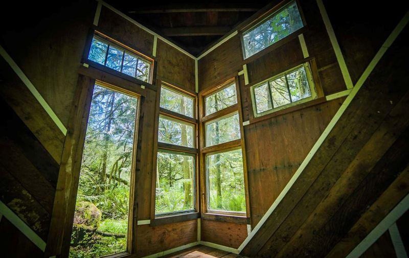 Grandes ouvertures vitrées - Forest-cabane par Jacob Witzling - Washington, USA