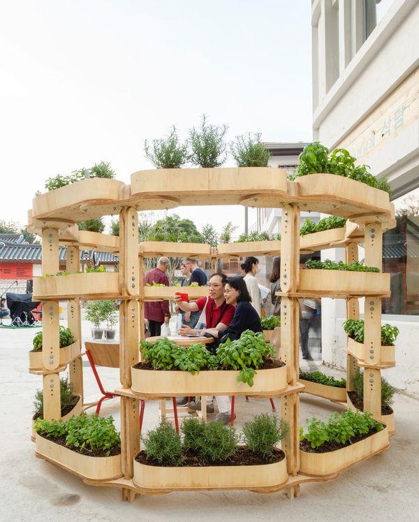 Légumes et fleurs sur le jardin modulaire - growmore par Husum-Lindholm - Seoul, Coree du Sud