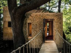 Pont avec des cordes accès entrée - Woodman-Treehouse par Mallinson-BEaM-studio - Angleterre