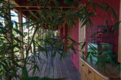 Terrasses privatives avec plantes - Mascobado par Architecture & Environnement - Montpellier, France