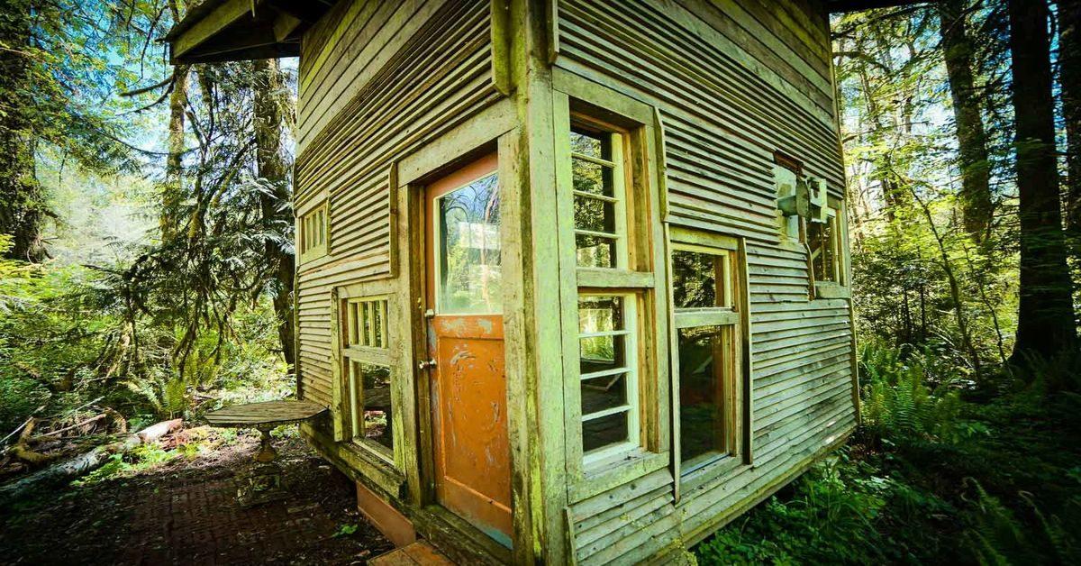 Une cabane d 39 tudiant contruite en mat riaux recycl s pour - Zen forest house seulement pour cette maison en bois ...