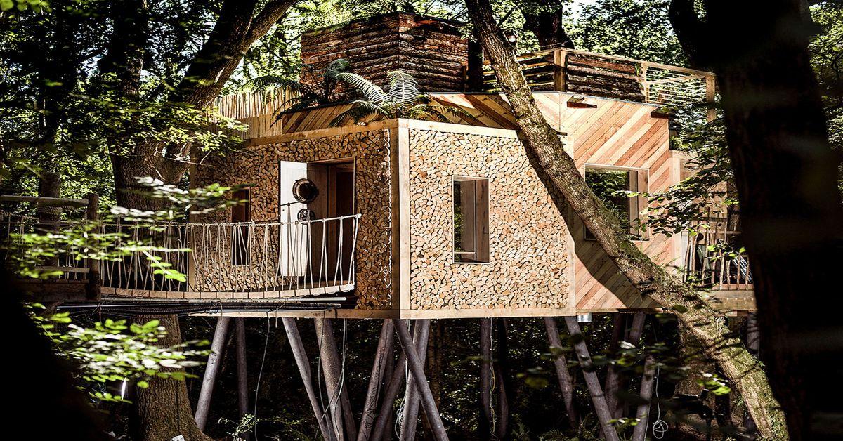 Une Cabane Dans Les Arbres Au Confort DUne Maison  Build Green