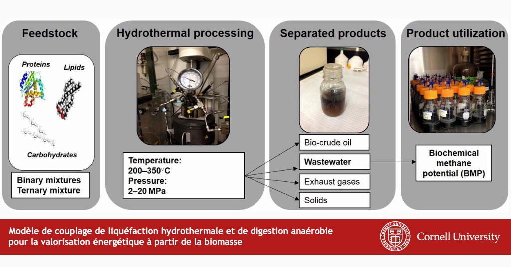 couplage de liquefaction hydrothermale et de digestion anaerobie