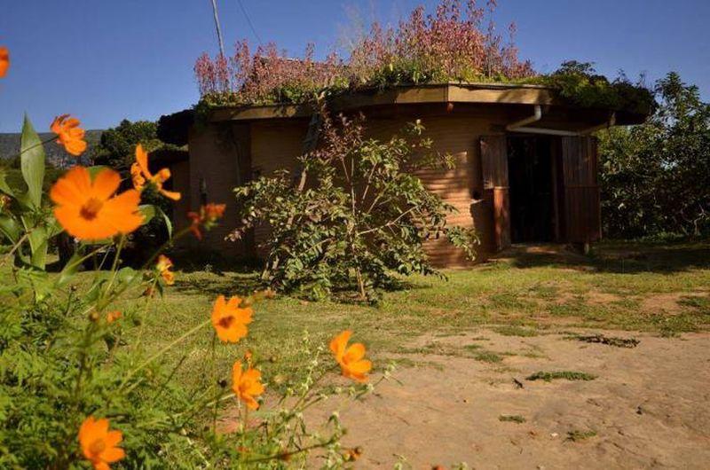 Toiture végétalisée - House-Ibicoara par Auwaearth - Ibicoara, Bresil © Auwaearth