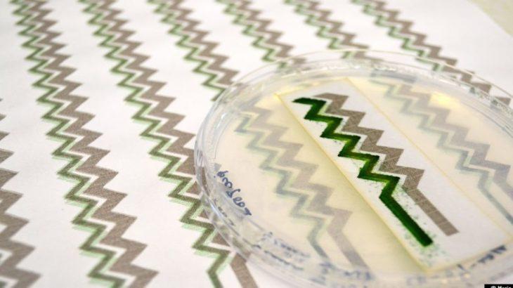 Une-Un papier peint qui produit de l'électricite © Imperial College London
