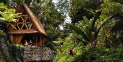 Vue jardin - Hideout par Jarmil Lhotak - Alena Fibichova - Bali, Indonesie © Fibichova