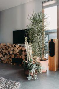 Déco plantes et stockage bois - Haarlem-Shuffle par vanOmmeren-architecten - Haarlem, Pays-Bas © Eva Bloem