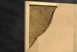 Racines de graines pour isolation - Matelas-Radiculaire par Rootman - Chili © Rootman
