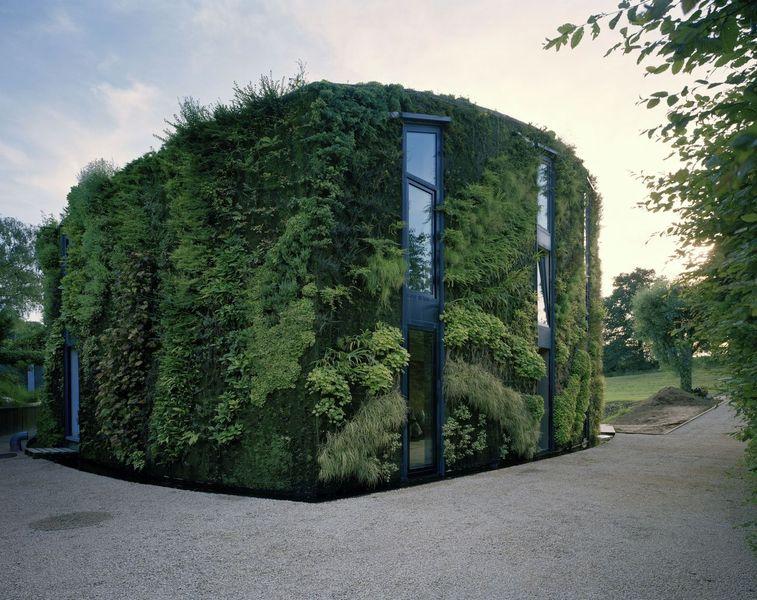 Façades murs végétalisés - Magnificent-House-Brussels par Samyn And Partners