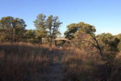 Paysage herbes et arbustes - Casa-Caldera par DUST - Texas, USA © Cade Hayes