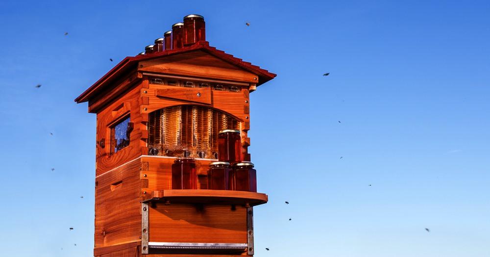 la ruche robinet honey flive la bonne id e build green. Black Bedroom Furniture Sets. Home Design Ideas