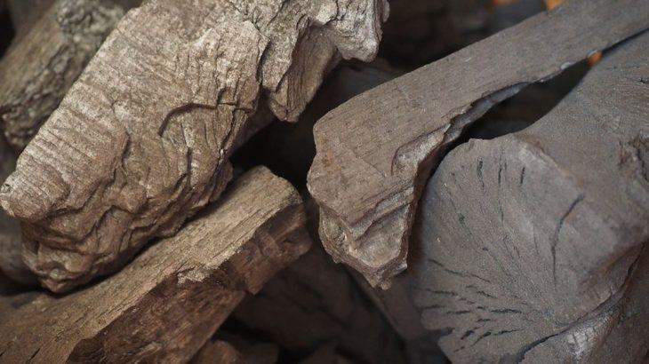 carbone-biogenique-et-materiaux-biosources