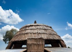 Toiture couche papyrus - Gahinga Batwa Village par Studio FH Architects - Gahinga, Rwanda © Will Boase Photography