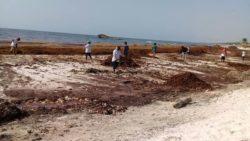 Nettoyage algues - House-Seaweed par Vazquez Sanchez - Puerto Morelos, Mexique © Pilar Rodriguez Rascon