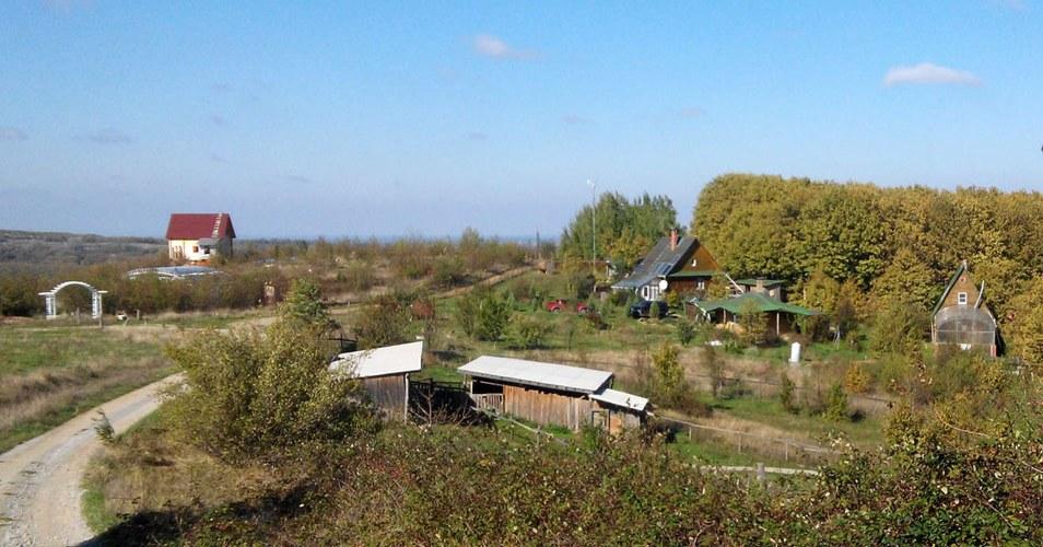 Kin Domain - Ecolieu