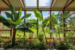 Mini jardin - earthship-home par Martin-Zoe - Adelaide, Australie