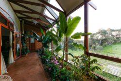 Mini jardin terrasse et grande baie vitrée - earthship-home par Martin-Zoe - Adelaide, Australie