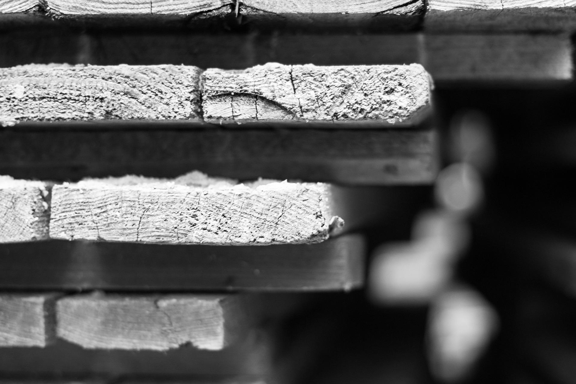 « Agrandir en bois, du bâti au jardin – insertion paysagère, technique et mise en œuvre »
