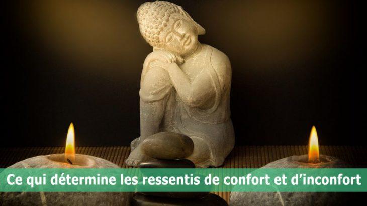 Ce-qui-détermine-les-ressentis-de-confort-et-inconfort