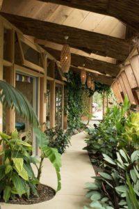 Jardin serre intérieure - Earthship Te Timatanga par Gus-Sarah - Waikato, Nouvelle-Zelande