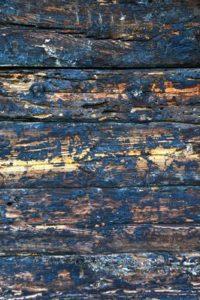 façade bois poreux
