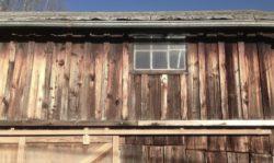 façade bois traité