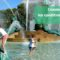 une-thermie-ville-children-570683-pixabay-skeeze