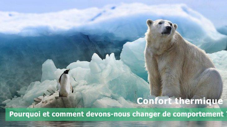 une-confort-thermique-polar-bear-