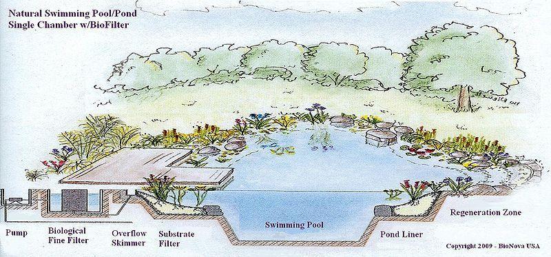 etude n'a pas porte sur l'isolation de piscines naturelles-02