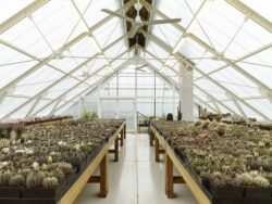 13- Family-Greenhouse par RicharDavidArchitekti - Horice, Republique Tcheque