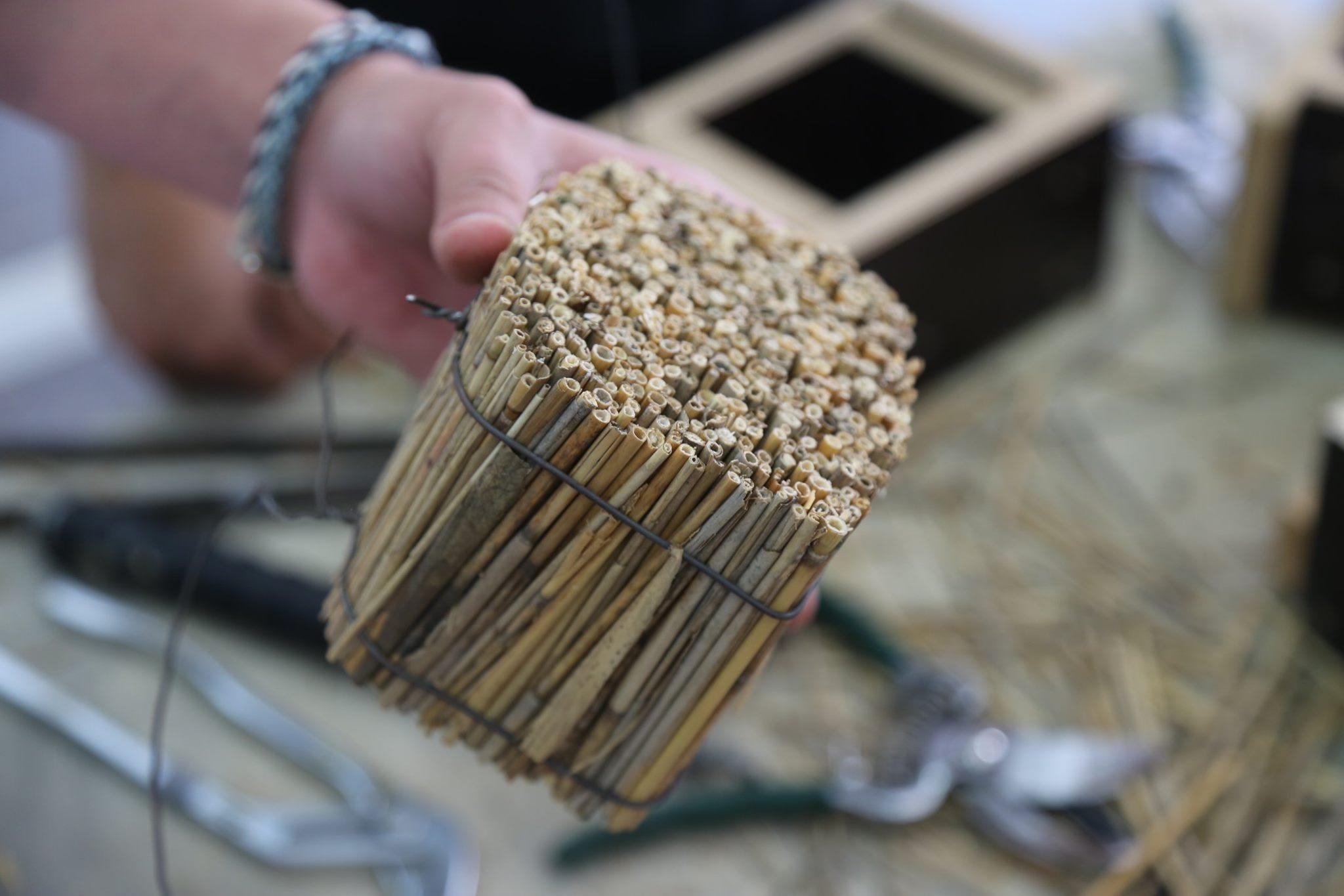 Comment utiliser les fibres végétales dans l'architecture contemporaine et dans le design ? Villefontaine (FR-38)