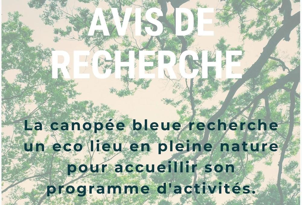 La canopée bleue cherche un eco lieu pour son programme d'activités en France