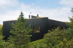 7-TGreen-Roof-KRADS-Islande-credits-photos-Marino-Thorlacius
