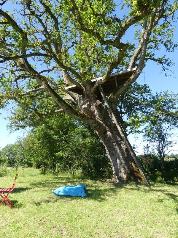 Cabane Auprès de mon Arbre - West Wood Tiny - photo Pascal Faucompré - Build Green